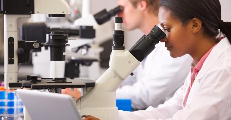 Hipolabor alerta: conheça a substância natural que contribui no processo inflamatório