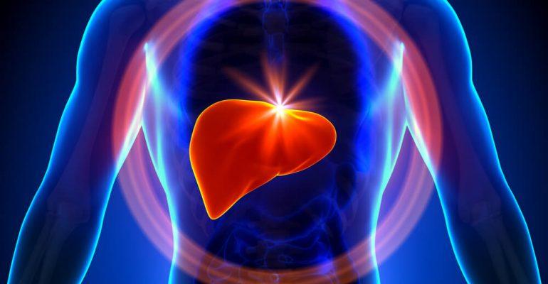 Hipolabor alerta: quais doenças do fígado são mais comuns
