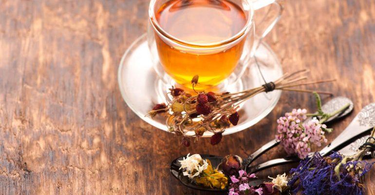 Hipolabor ensina: 6 remédios naturais que você precisa conhecer