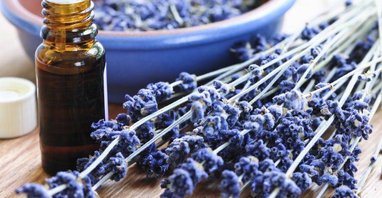 Problema respiratório: como a aromaterapia pode ajudar?