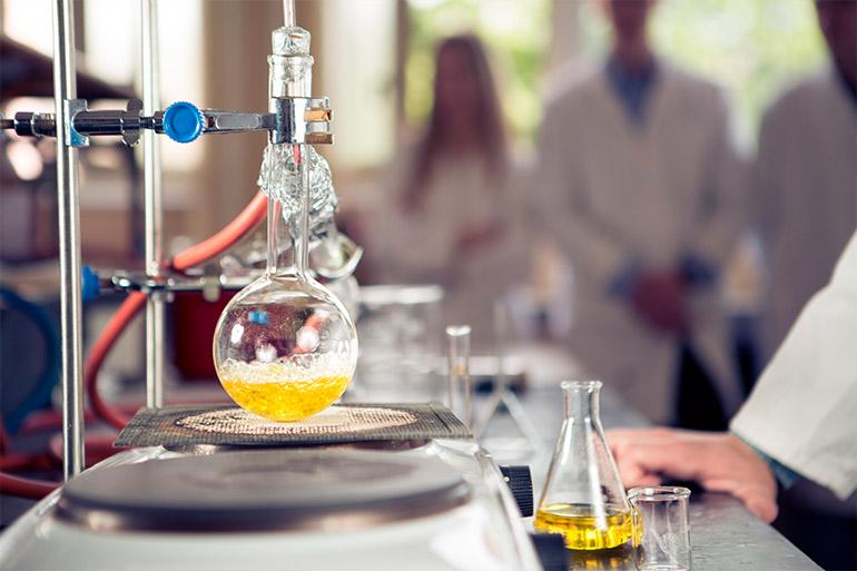 Quais são as principais matérias da graduação em Farmácia?